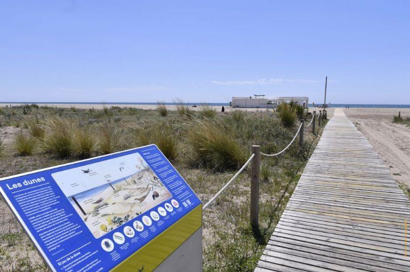 Es busquen exploradors per fer recompte de flora i fauna als parcs i platges metropolitans