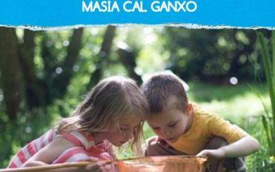 La cura del medi ambient i la ciència en el lleure educatiu, al casal d'estiu de Cal Ganxo