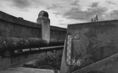 El concurso de fotografía 'Viu el Parc' llega a la vigesimosexta edición