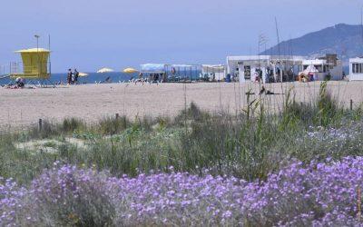 La platja de Castelldefels renova el distintiu Biosphere de qualitat turística