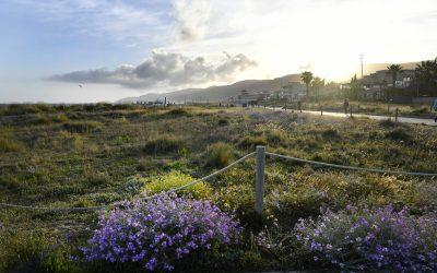 Castelldefels tanca la platja durant la revetlla de Sant Joan a partir de les 9 de la nit
